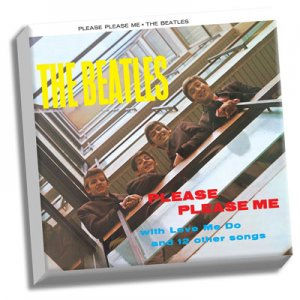 "PLEASE PLEASE ME 20"" x 20"" CANVAS"