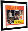 BEATLES HELLO GOODBYE LITHOGRAPH - FRAMED