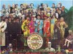 SGT. PEPPER 1000 PIECE PUZZLE - Last Two
